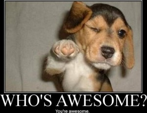 who-is-awesome (1)